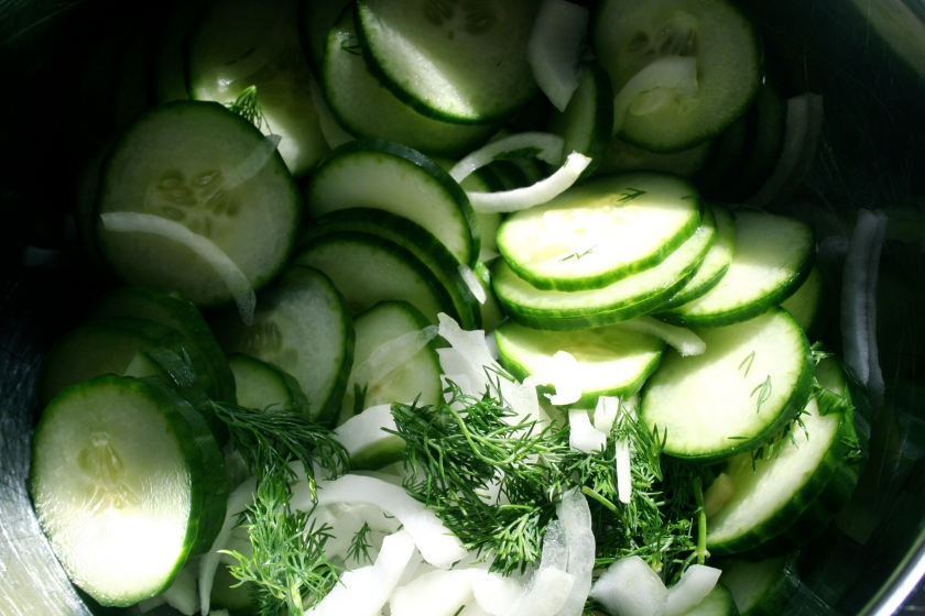 quick cucumber pickles bowl