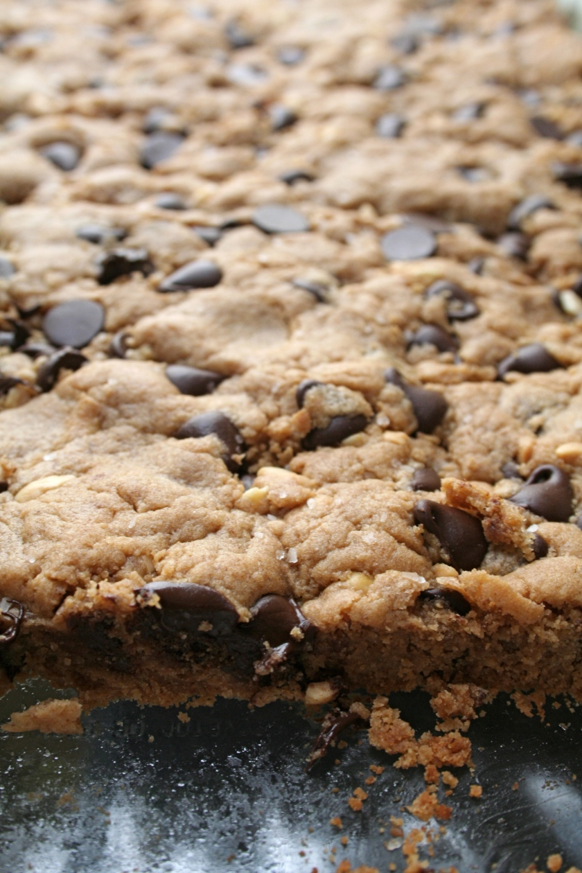 peanut butter chocolate chip bars 5