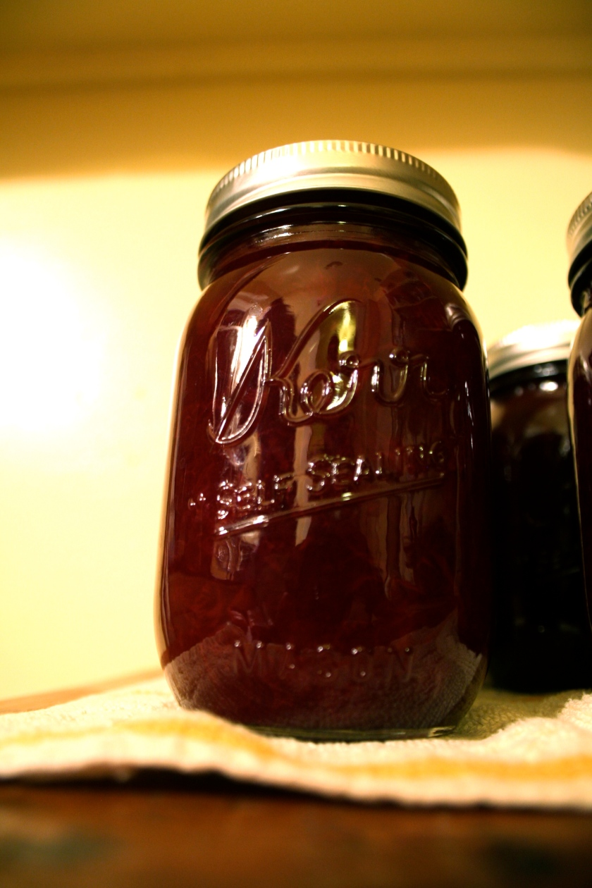 plum preserves 6