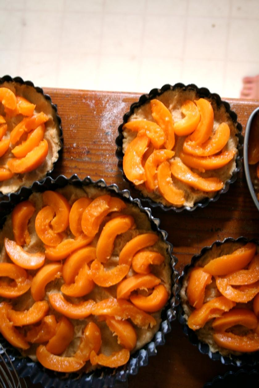 apricot torte 3