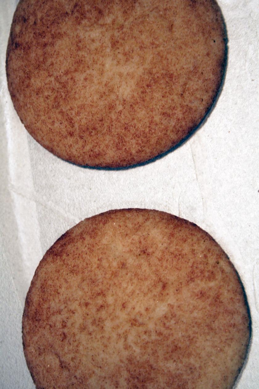 snickerdoodles 3